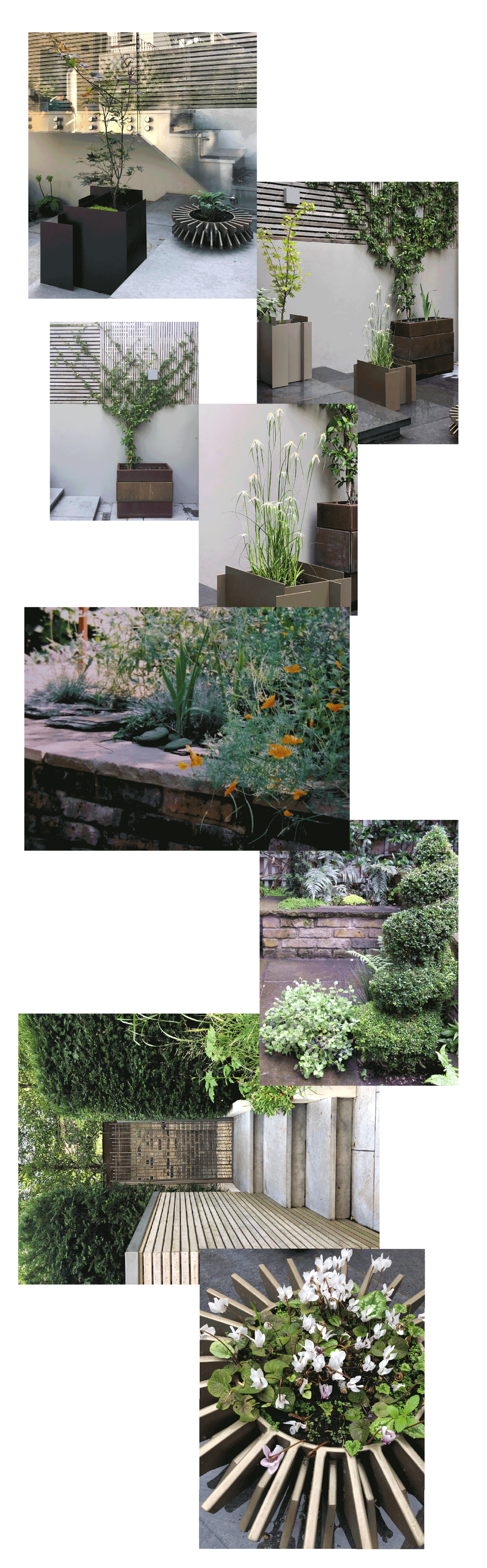 Gardening-London--Galerie-1
