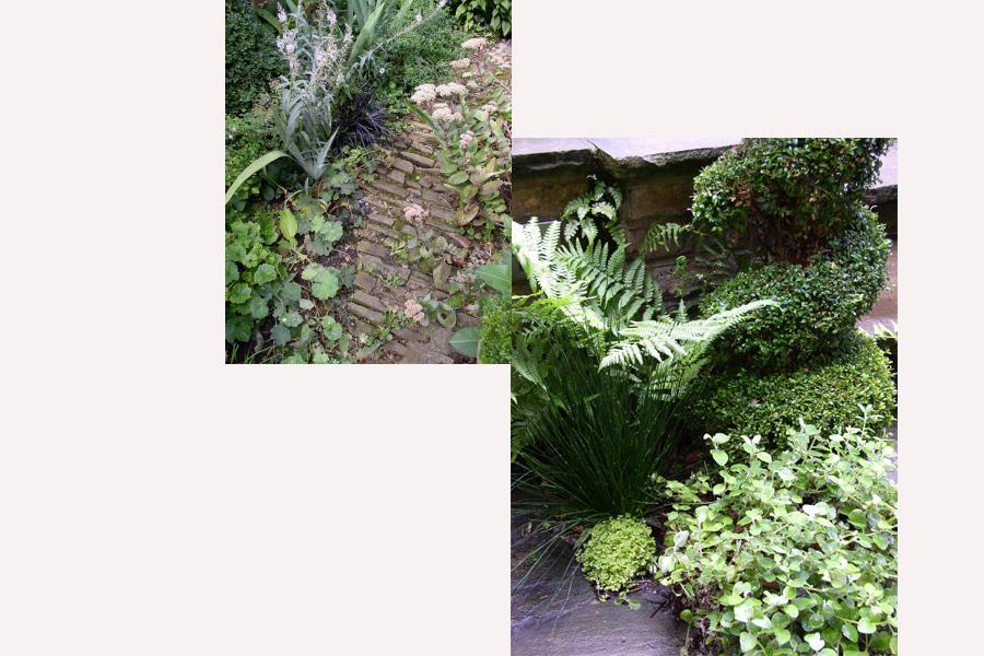 Harry's<br>Gardens